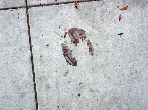 blood on the sidewalk